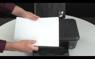 Почему принтер эпсон не захватывает фотобумагу